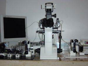 Microscopio Icsi