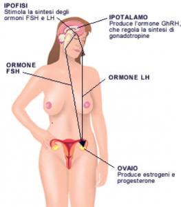 La stimolazione Ormonale