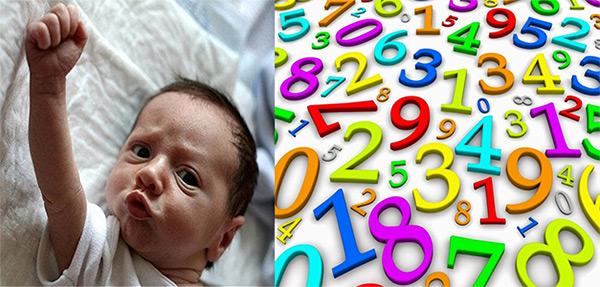 Numeri ICSI